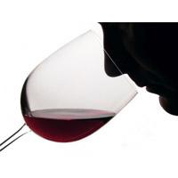 wine_evaluation 200