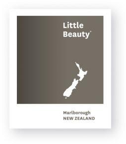 Little_Beauty Logo_Colour_dropshadow