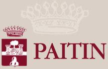 Paitin Logo