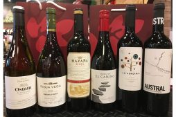 Rioja Case 17