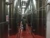 Inside winery 2